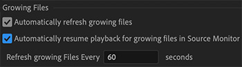 Growing file options in Premiere's Media preferences.